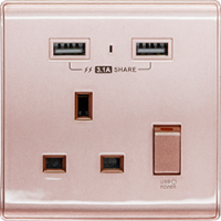 M2K AP105APC3-RG 3.1A 單位 單蘇 2 USB 插座 (色彩系列 ) 玫瑰金 電制 制面 電掣 掣面 插蘇